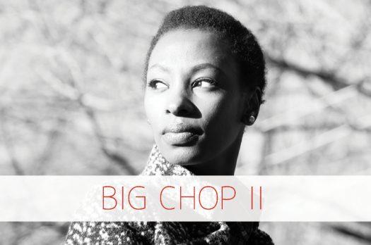 Big Chop II