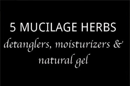 5 Mucilage Herbs for Natural Hair