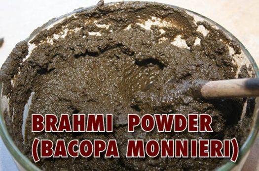 Profiling: Brahmi (Bacopa Monnieri)