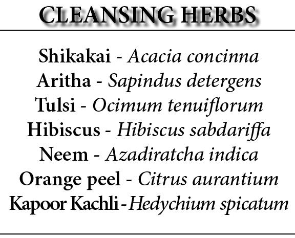 ayurveda cleansing herbs