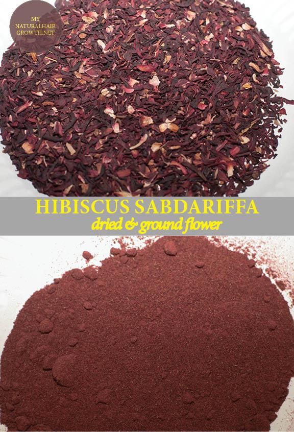 Profiling Hibiscus Flower Hibiscus Sabdariffa Tribeofchic