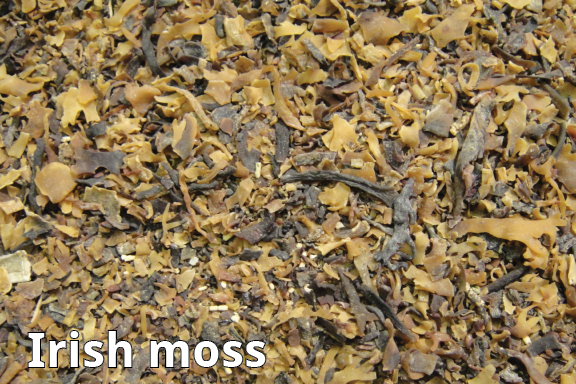 irish moss for natural hair
