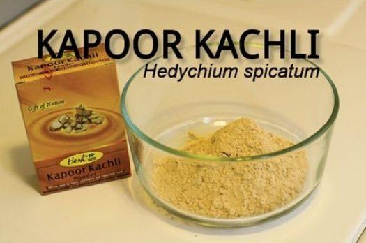 Profiling Kapoor Kachli (Hedychium spicatum)